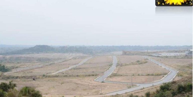 Beautiful-Plot-For-Sale-At-Sunflower-Block-Dha-Valley-Islamabad_1